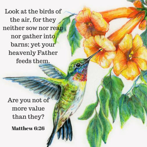 Look at the birds of the air, for they neither sow nor reap nor gather into barns; yet your heavenly Father feeds them.